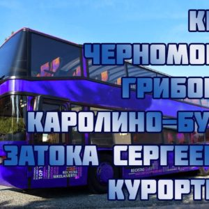 автобус киев грибовка каролин-бугаз затока сергеевка курортное